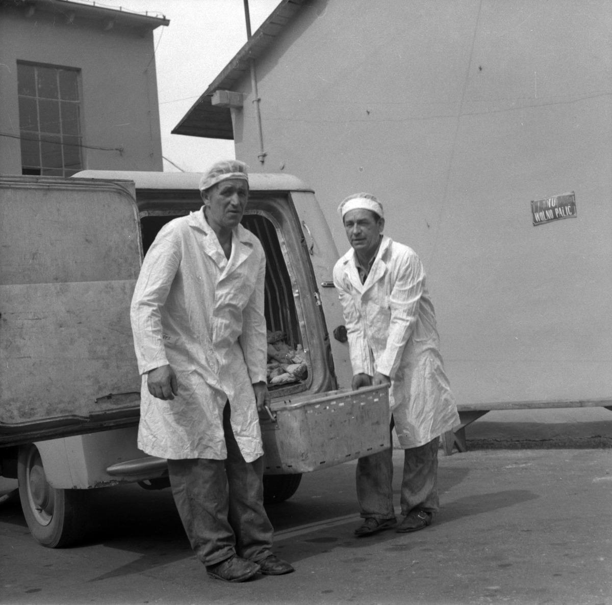 Pracownicy Zakładów Mięsnych [7]