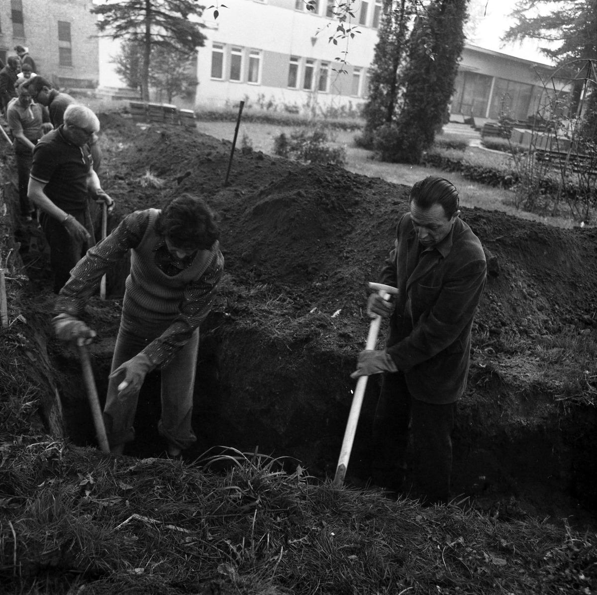 Czyn społeczny 1977 r. [2]