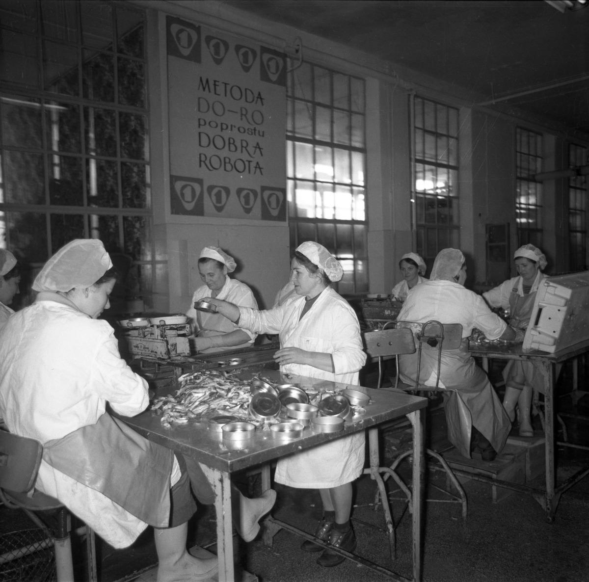 Pracownicy Zakładów Rybnych [5]