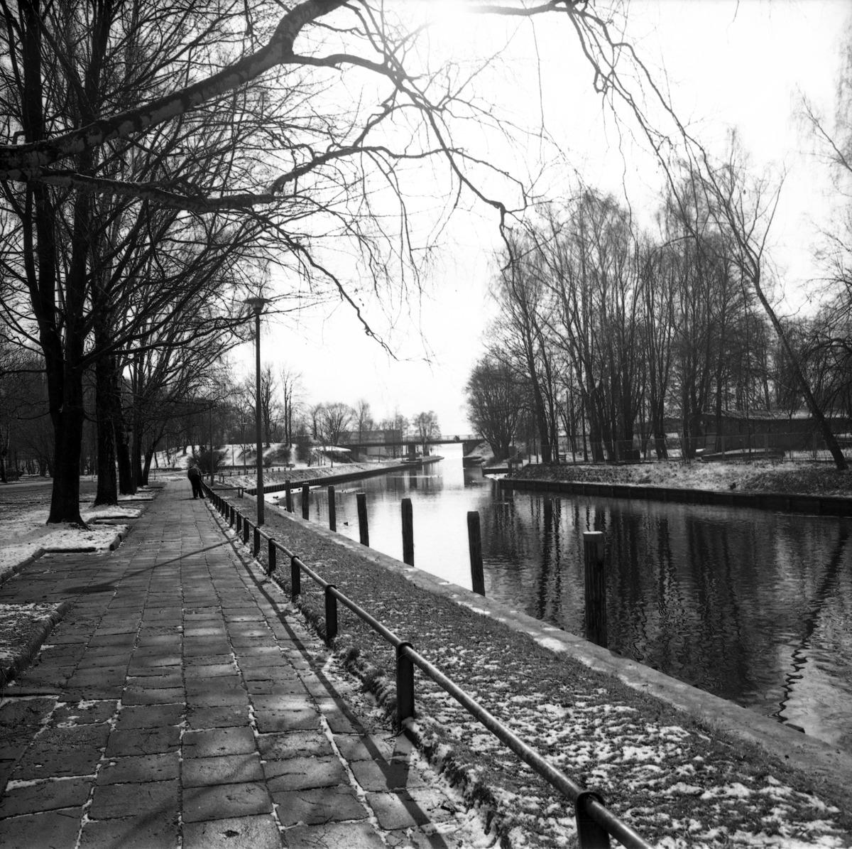 Kanał Łuczański [9]