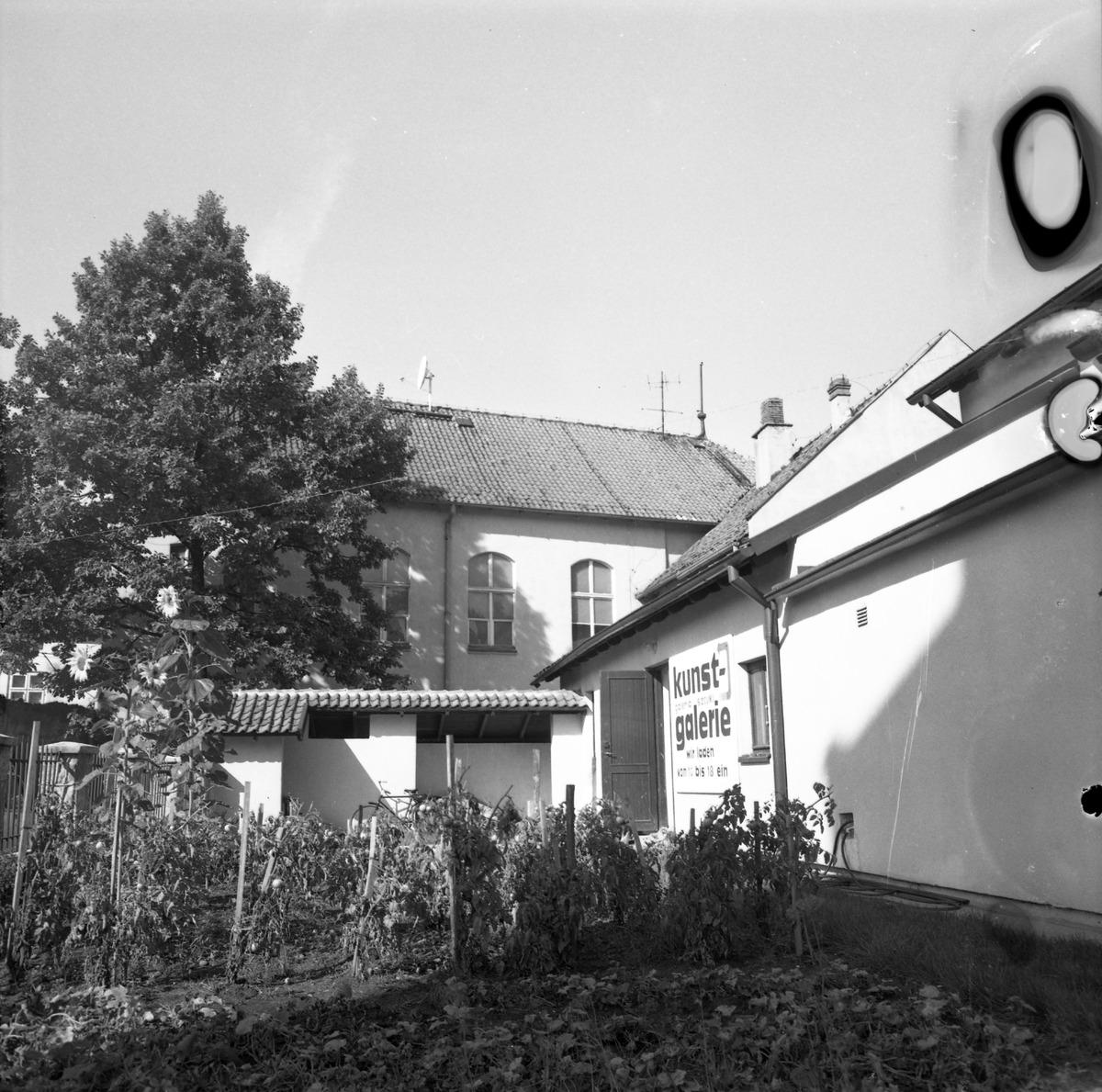 Galeria sztuki przy ul. Mickiewicza