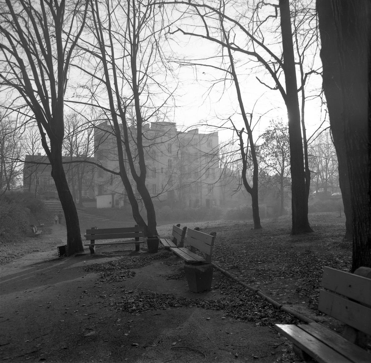 Park po cmentarzu komunalnym