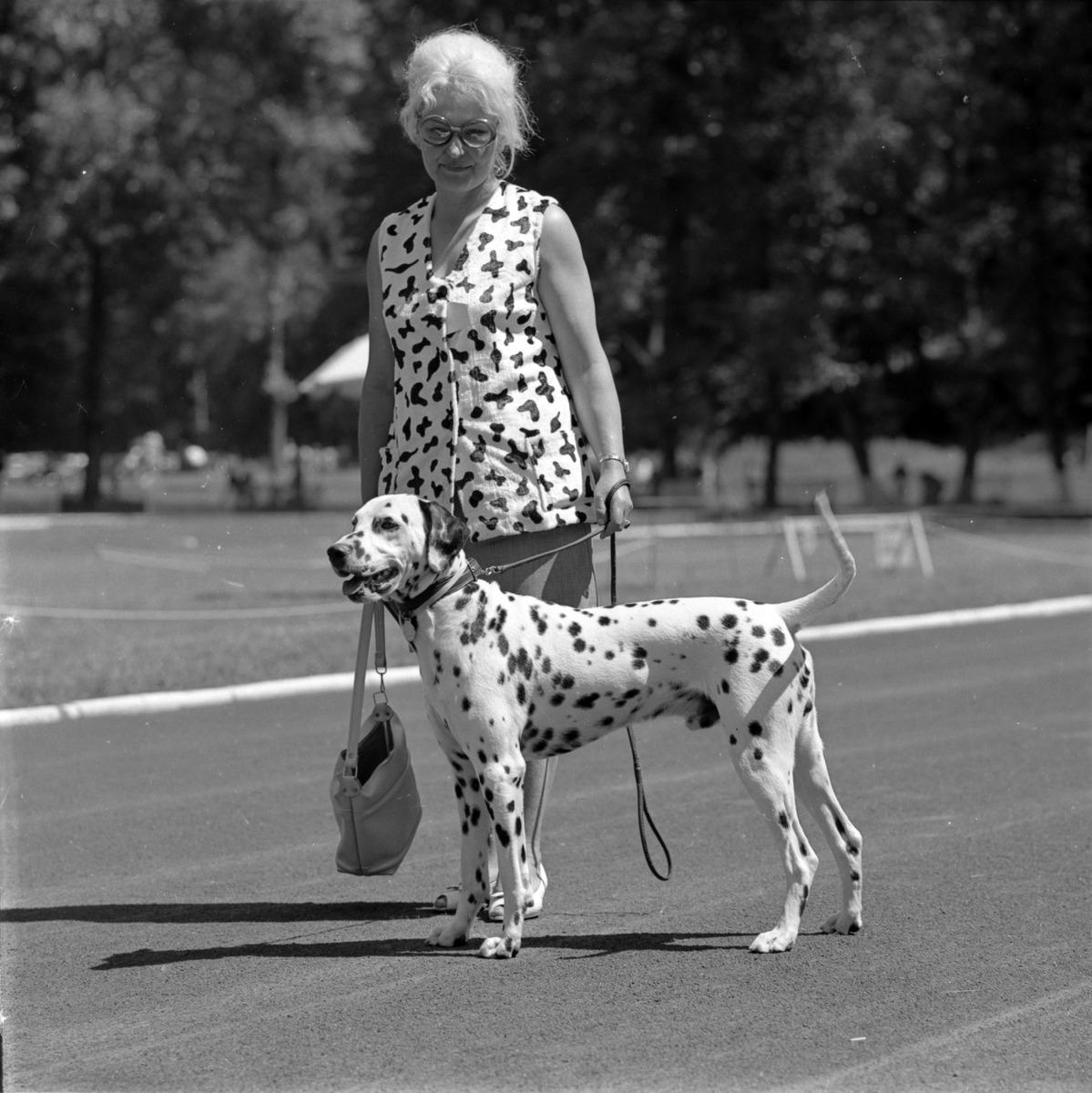 Wystawa psów w Giżycku