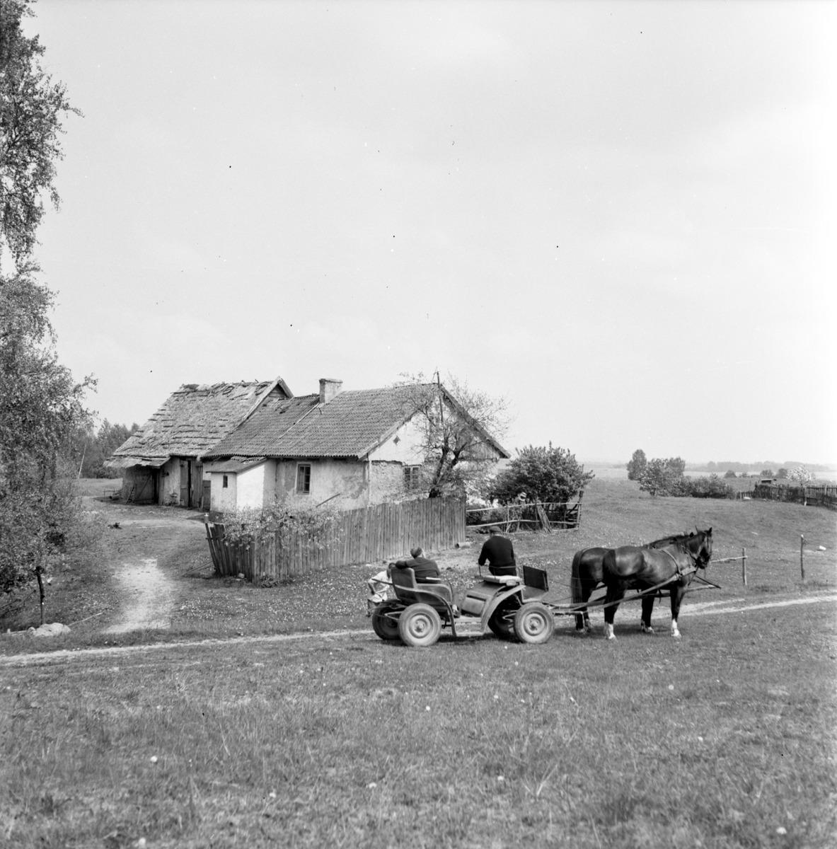 PGR Monetki, 1967 r.