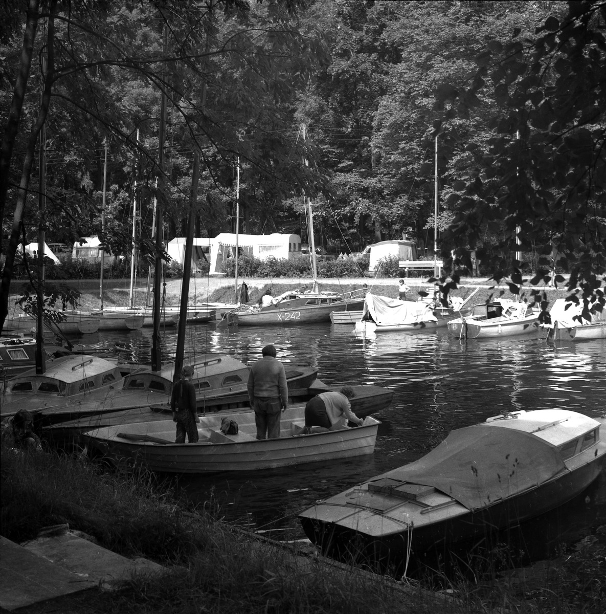 Camping przy zamku [8]