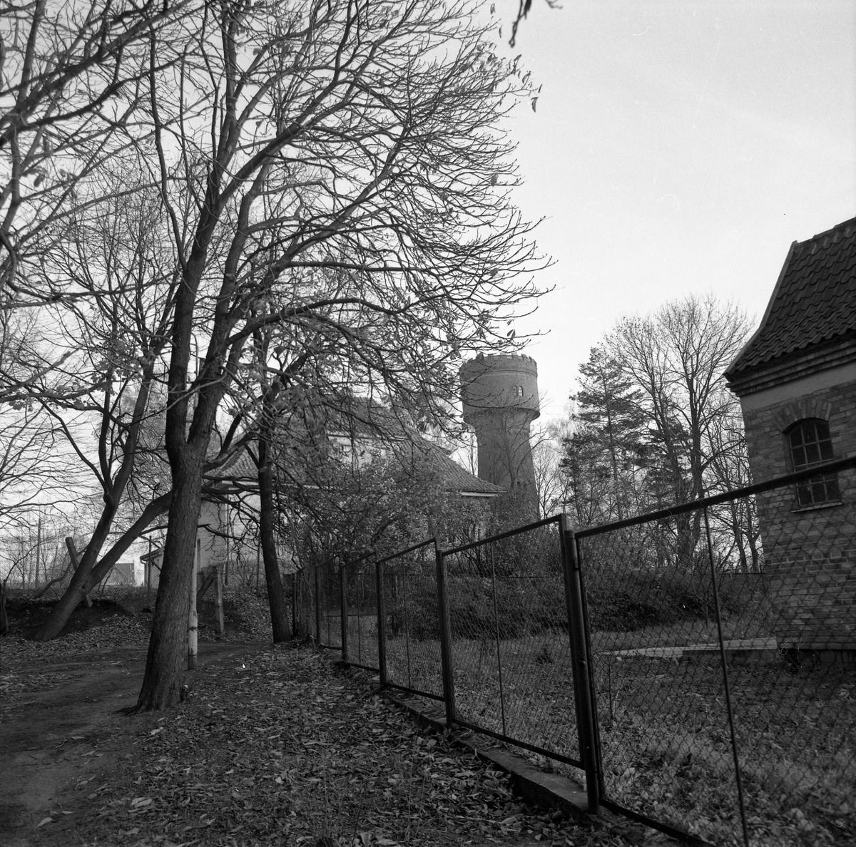 Park po cmentarzu komunalnym [8]