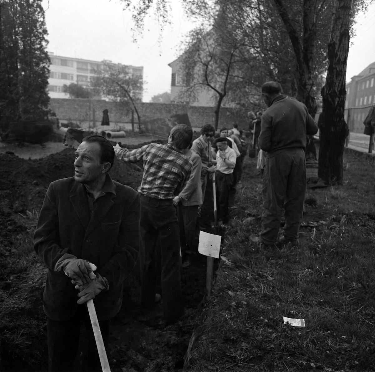 Czyn społeczny 1977 r. [3]