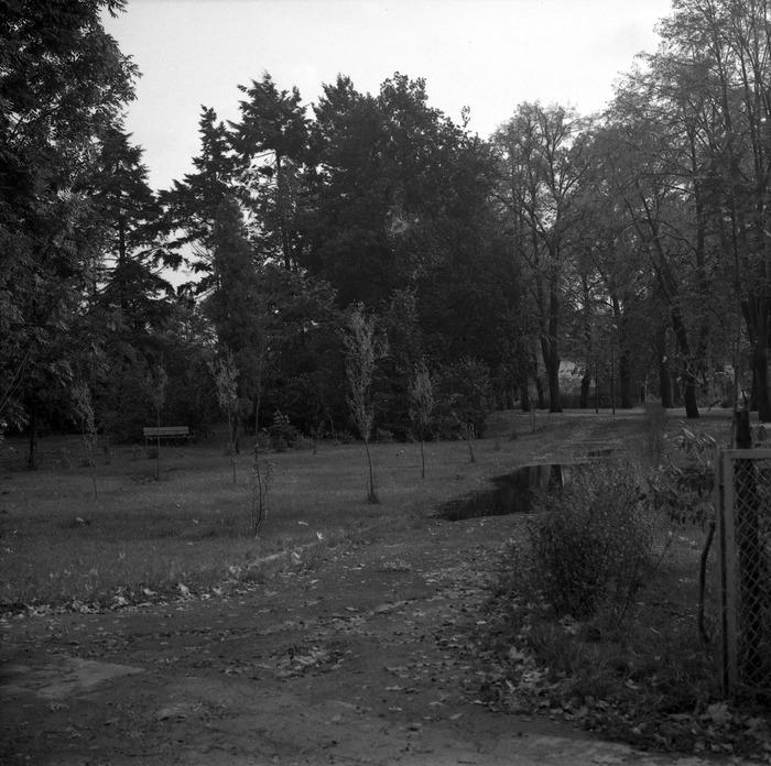 Park przy zamku [4]