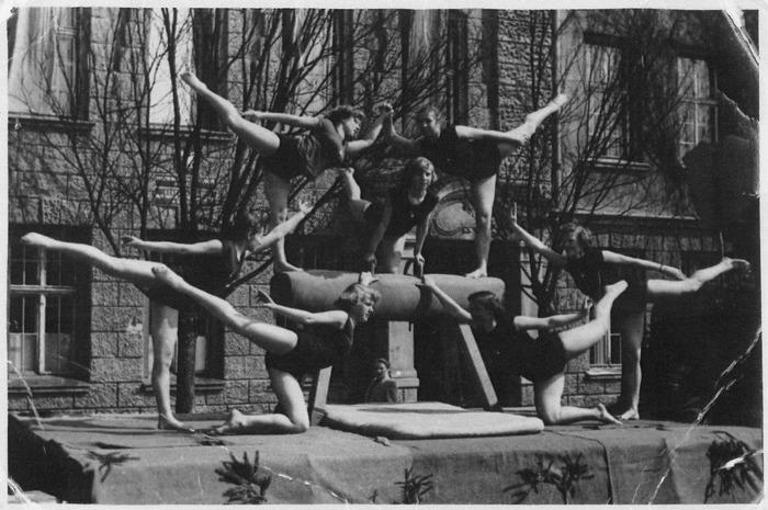 Pokazy gimnastyczne [3]