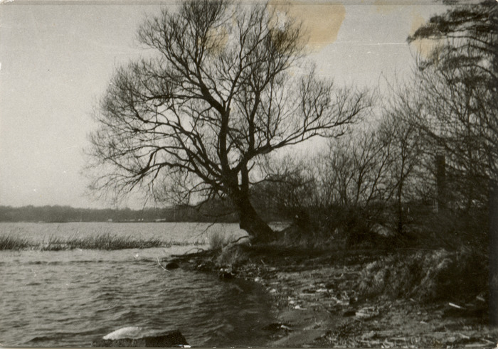 Jezioro Niegocin [2]