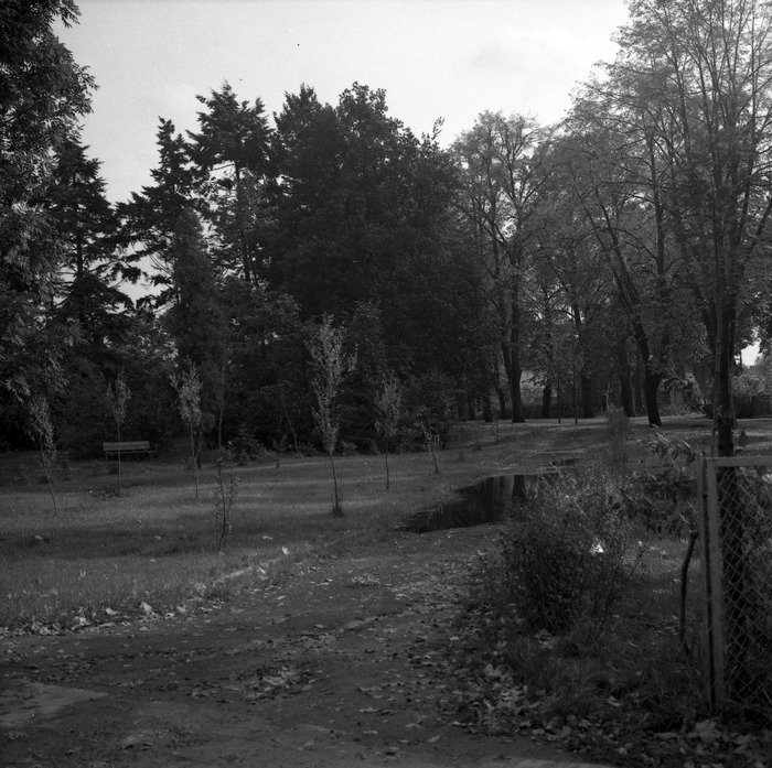 Park przy zamku [5]