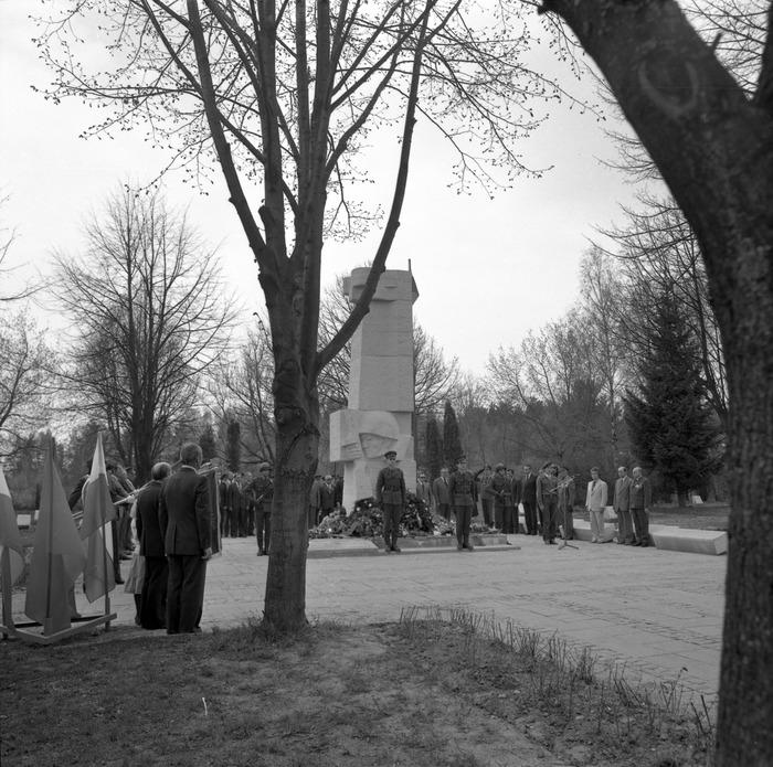 Uroczystość odsłonięcia pomnika żołnierzy radzieckich [44]