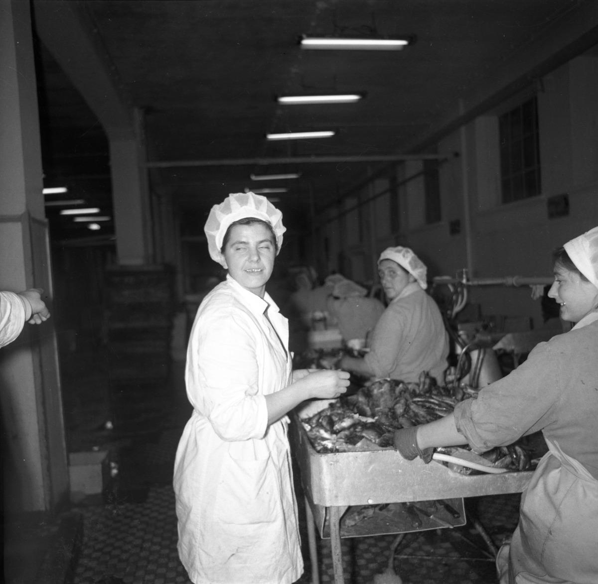 Pracownicy Zakładów Rybnych [6]