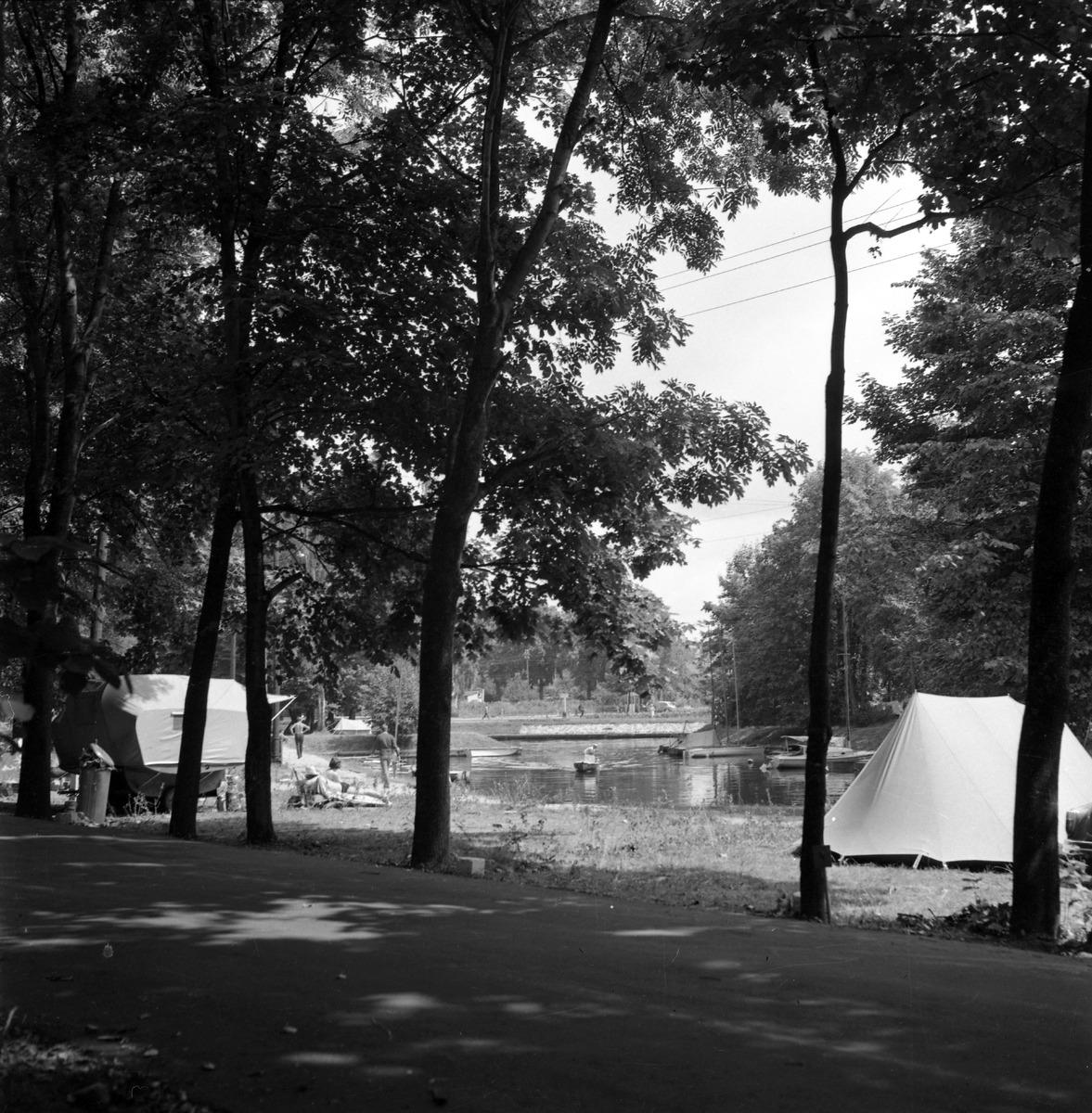 Camping przy zamku [7]