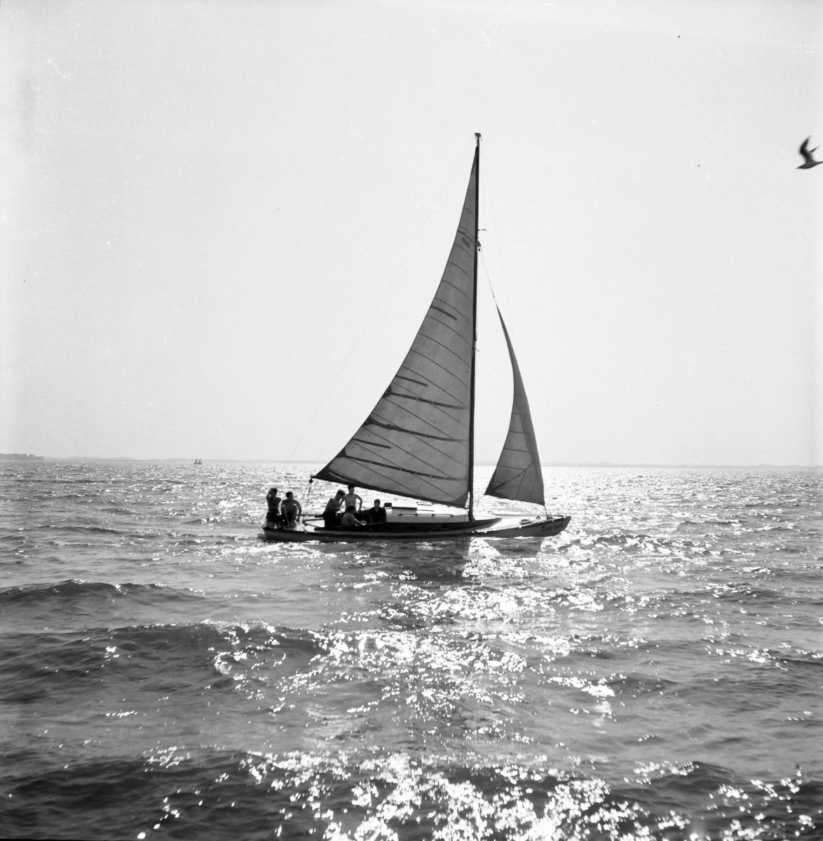 Jachty na Kisajnie [6]