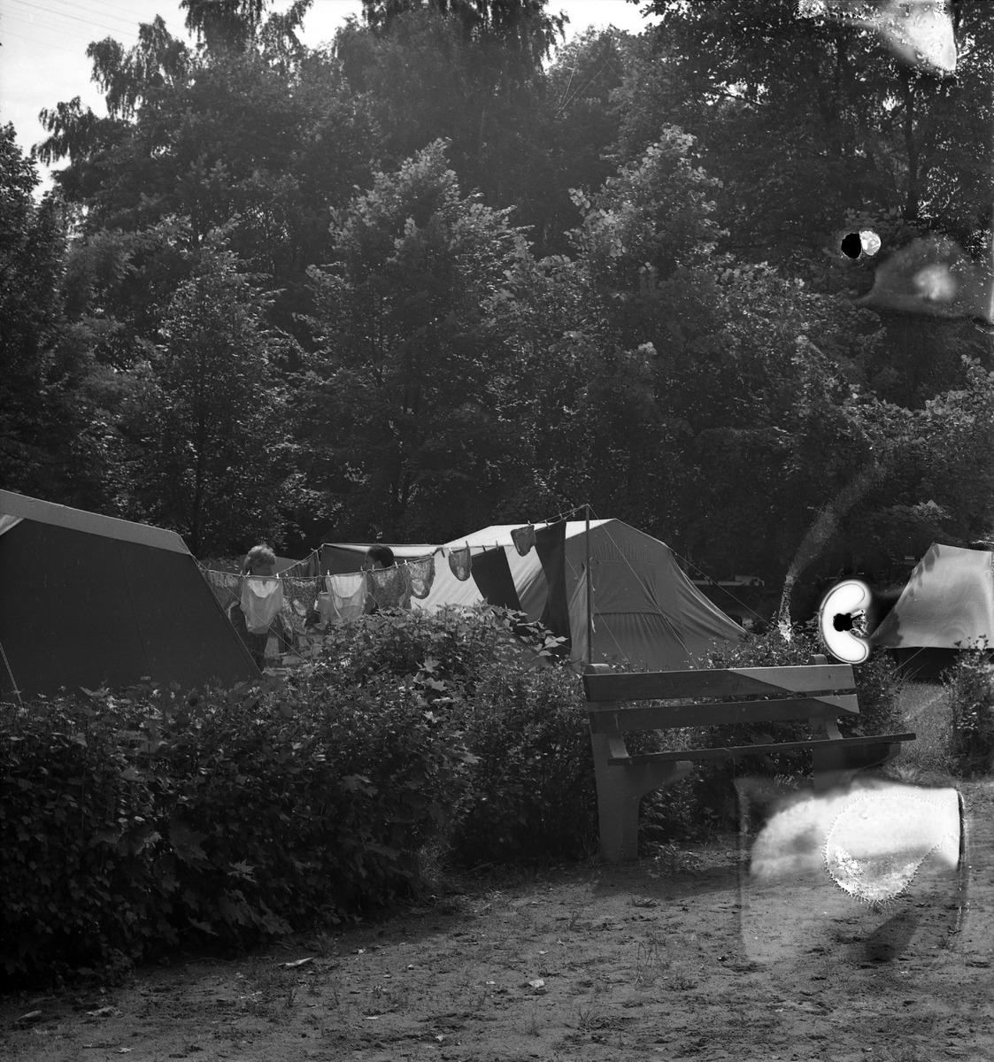 Camping przy zamku [4]