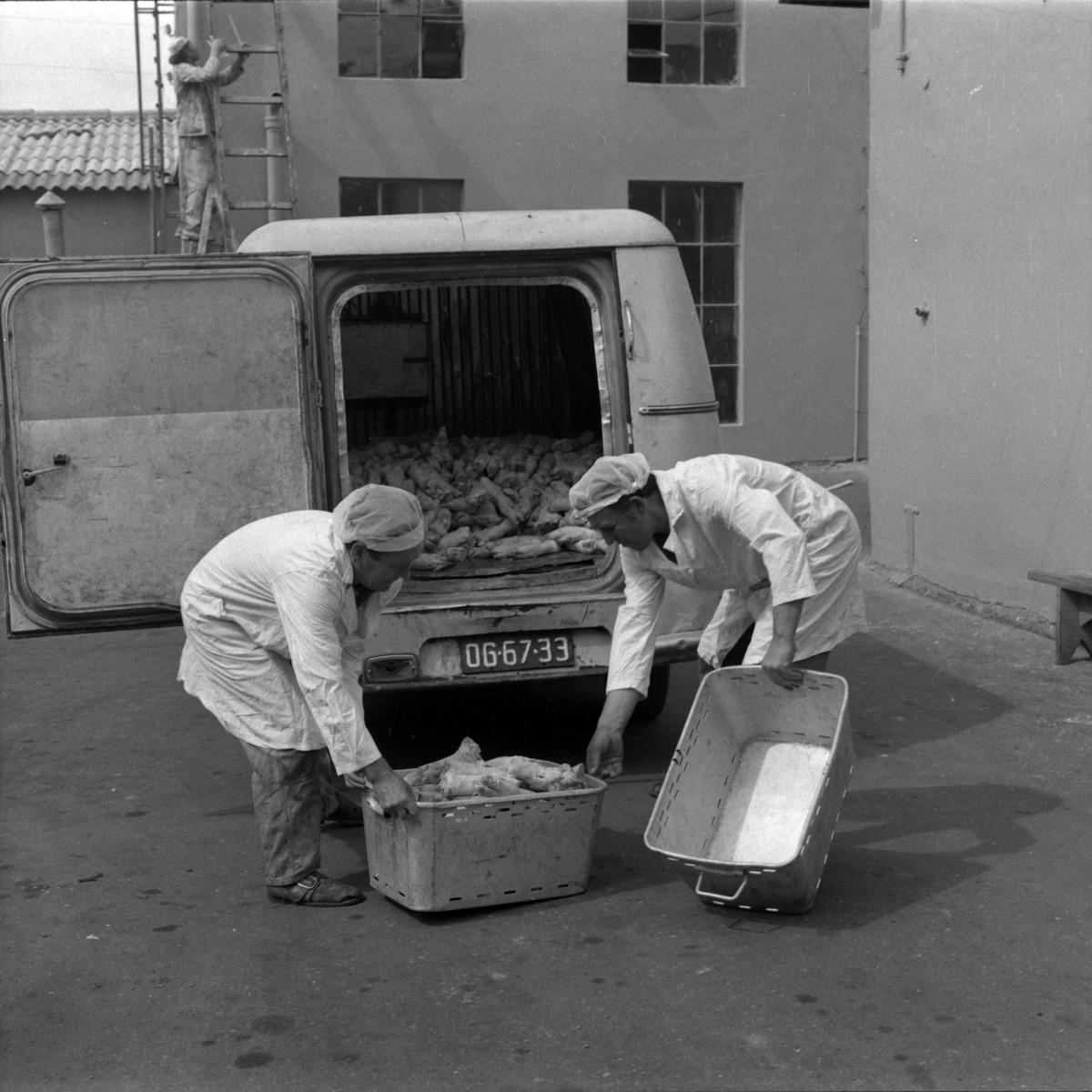 Pracownicy Zakładów Mięsnych, 1977 r.