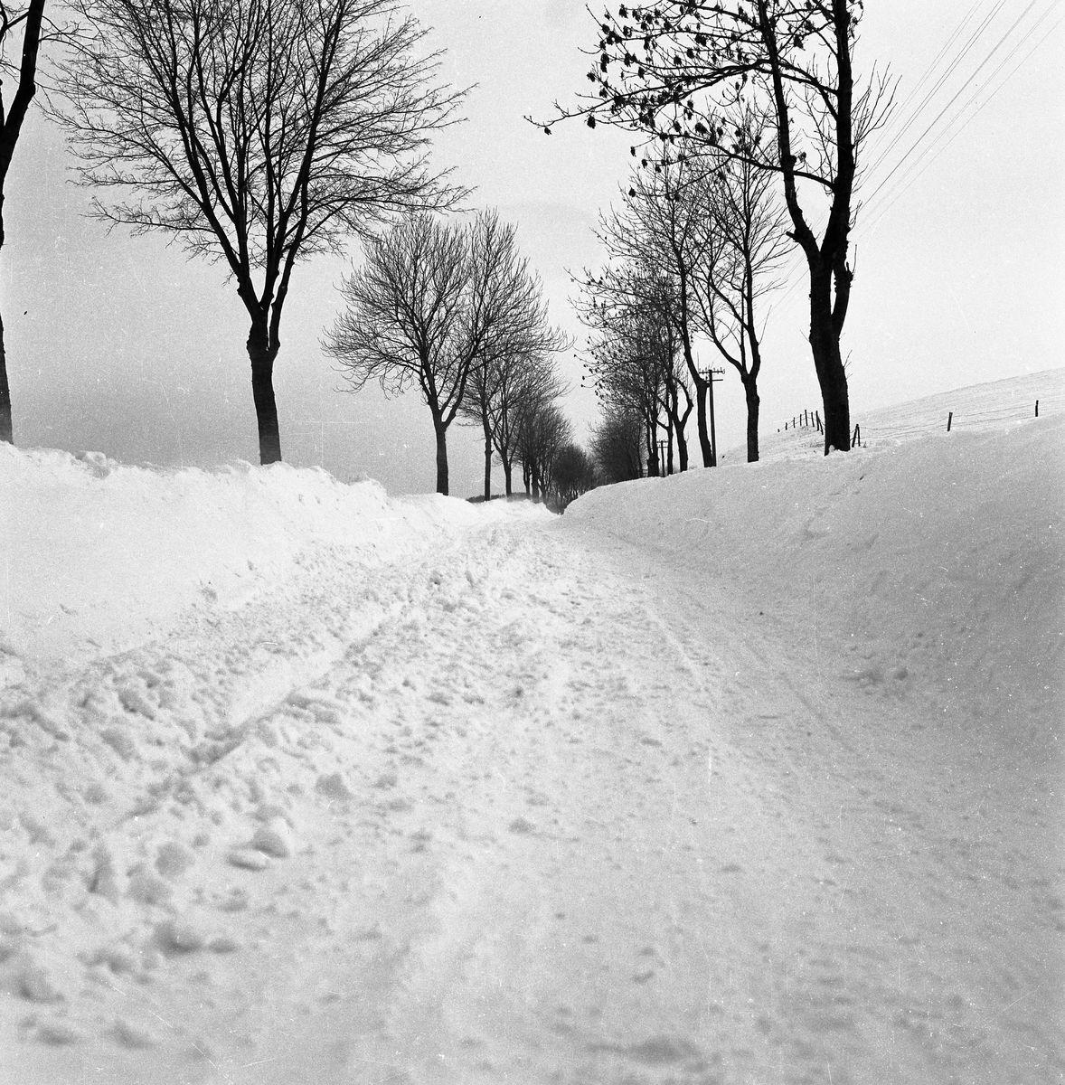 Zima 1965 r. [6]