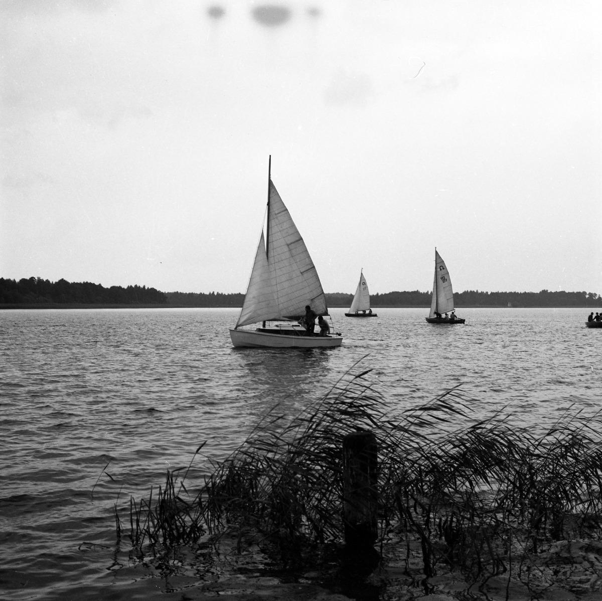 Jachty na Kisajnie [2]