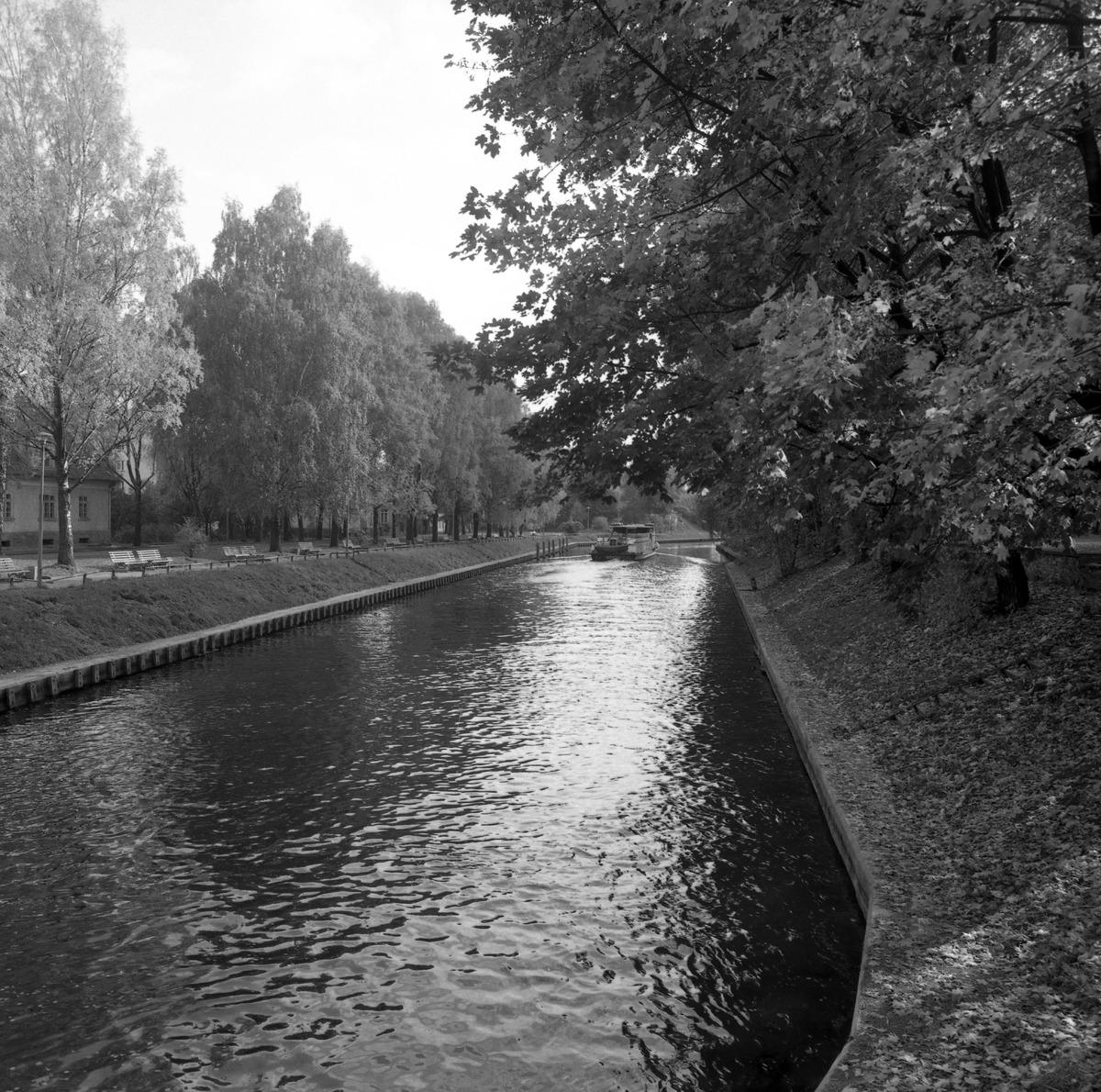 Kanał Łuczański [2]