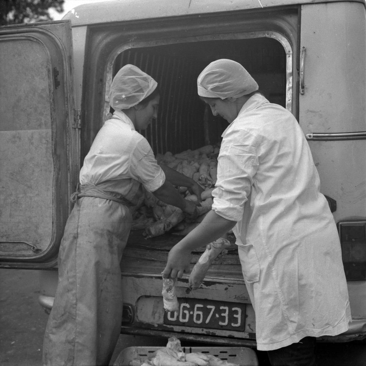 Pracownicy Zakładów Mięsnych [5]