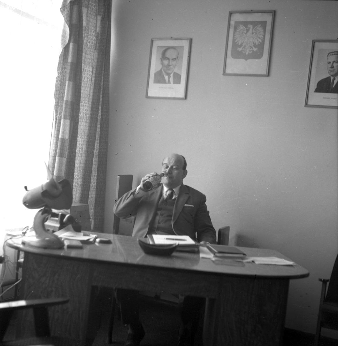 Dyrektor MZP  [3]