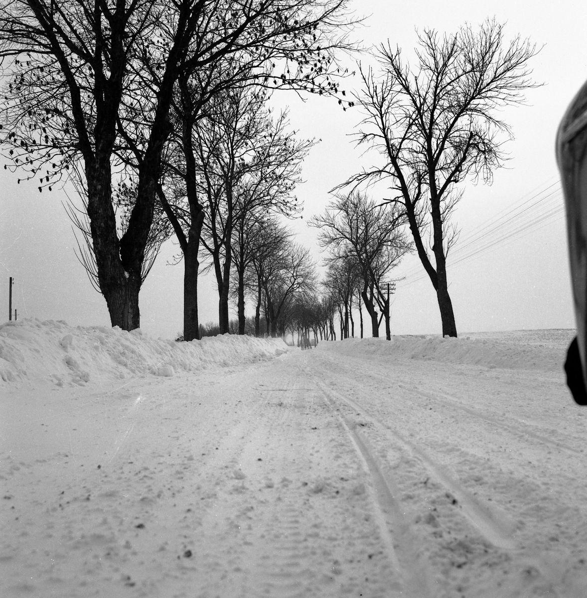 Zima 1965 r. [5]