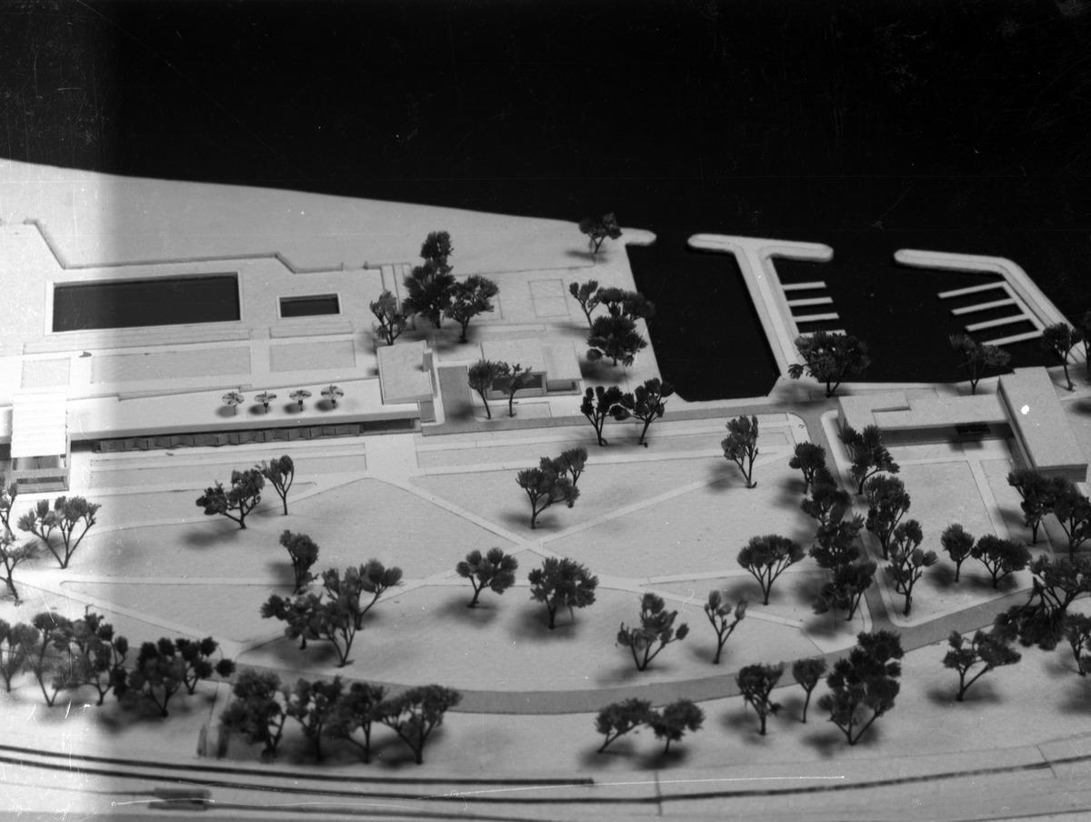 Projekt zabudowy brzegu Niegocina