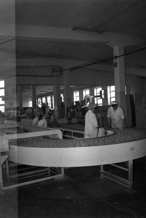 Linia produkcyjna WPC [34]