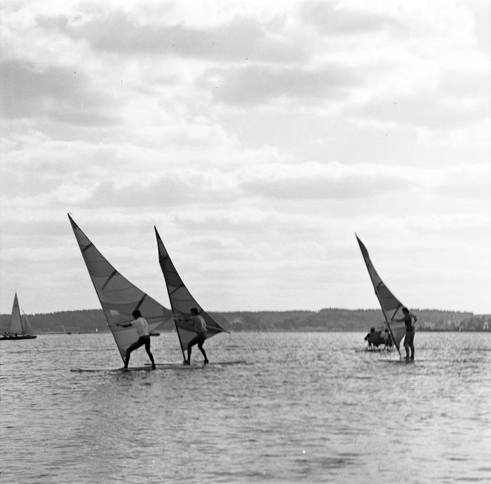 Windsurferzy na Niegocinie [2]