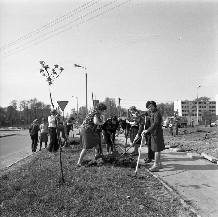 Czyn społeczny, 1980 r. [7]