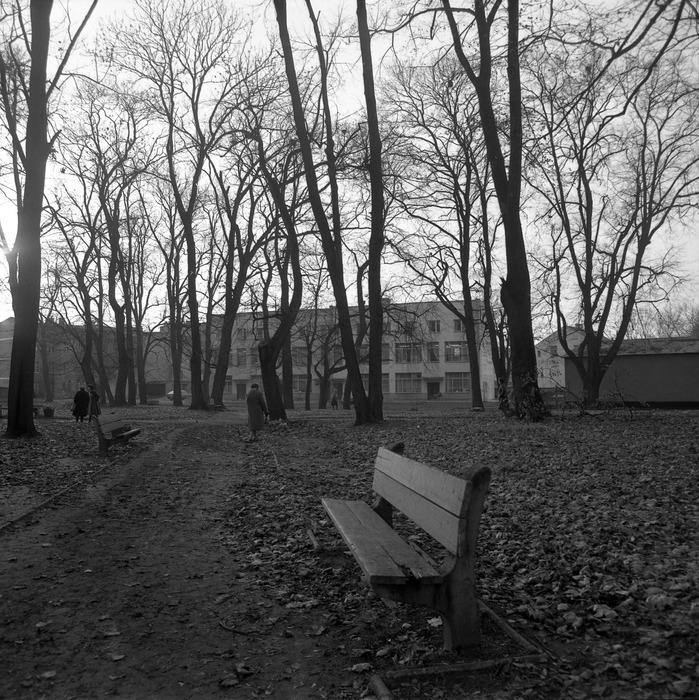 Park po cmentarzu komunalnym [10]