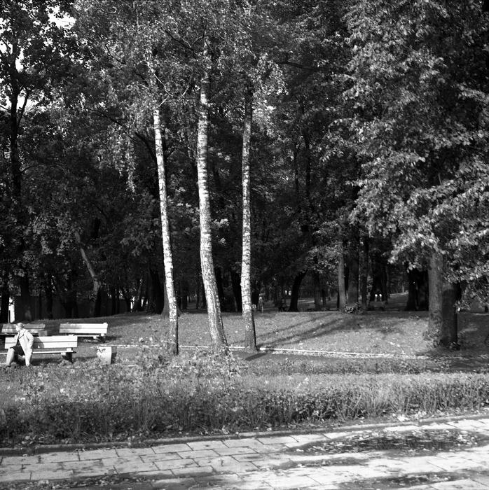 Park po cmentarzu komunalnym [3]