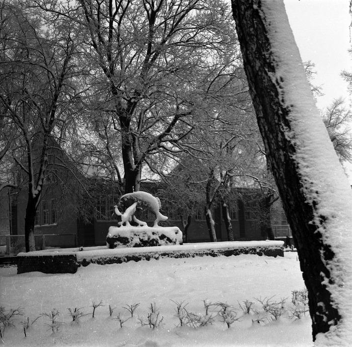 Zima 1988/1989 r. [17]