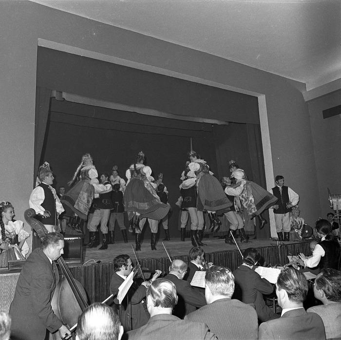 Występ Zespołu, 1971 r. [24]
