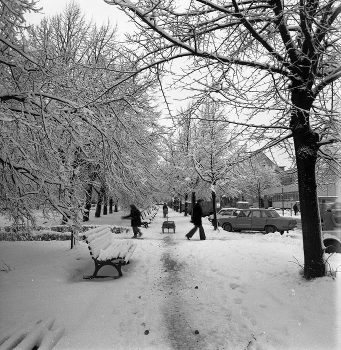 Zima 1988/1989 r. [31]
