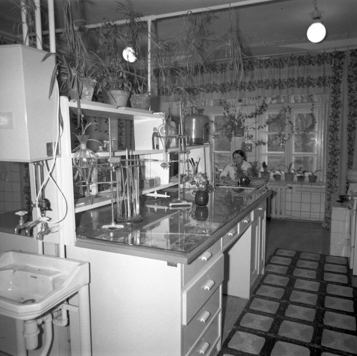 Prezentacja dojrzewalni serów, 1978 r. [3]